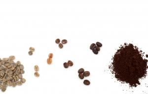 ivairiu-rusiu-kavos-pupeles